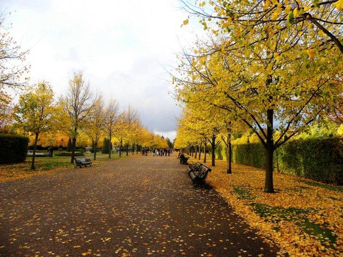 Фото Риджентс-парк. Великобритания, Лондон, Inner Circle