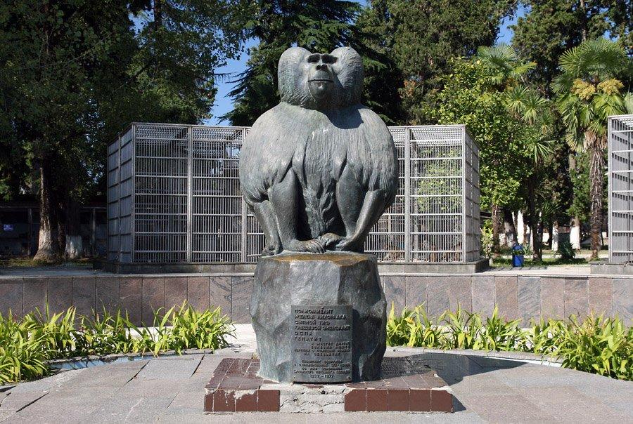 Фото Памятник обезьяне. Грузия, Абхазия, Сухум