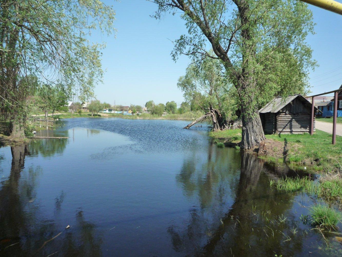 Фото P1030111.JPG. Россия, Марий Эл республика, Малые Маламасы, Unnamed Road