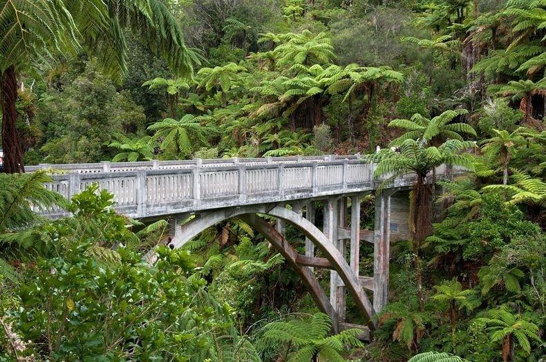 Фото Мост в Никуда. Новая Зеландия, Manawatu-Wanganui, Whanganui National Park, Unnamed Road