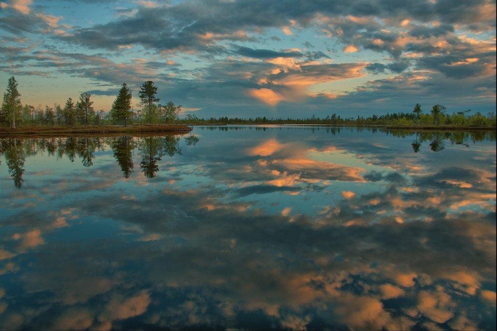 Фото Васюганские болота. Россия, 626194