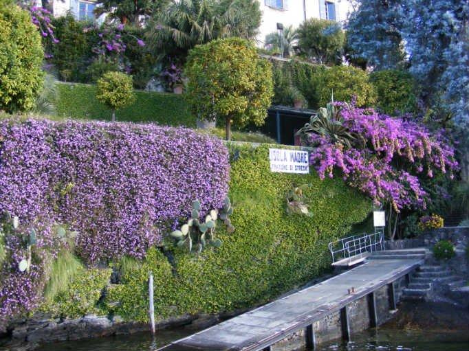 Фото Остров Мадре. Италия, Пьемонт, Verbania, Viale delle Magnolie, 6