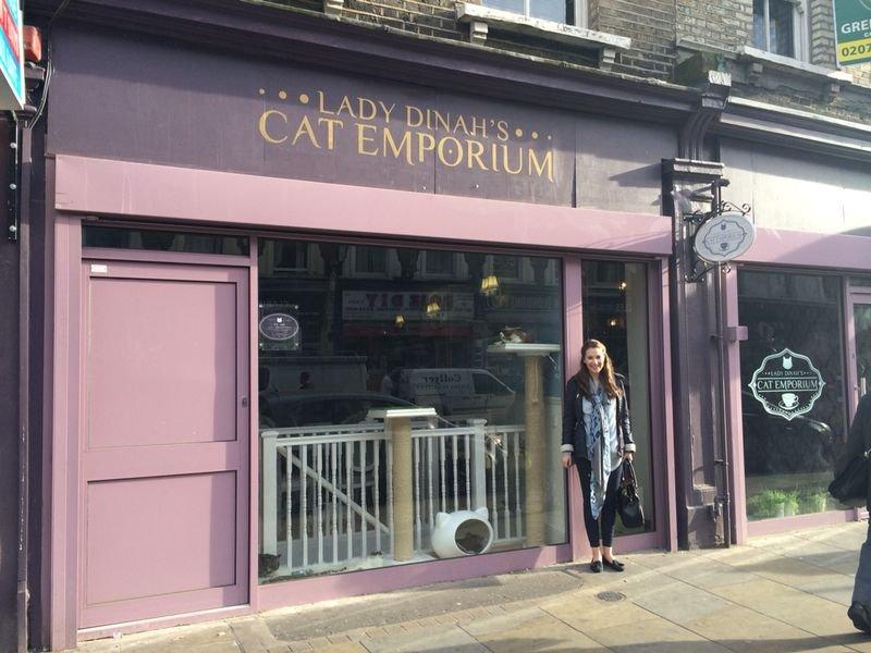 Фото Lady Dinah's Cat Emporium. Великобритания, Лондон, Bethnal Green Road, 124-128