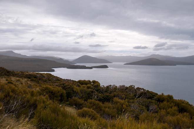Фото Остров Адамс. Новая Зеландия