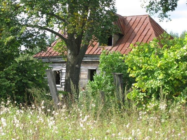 Фото Домик.JPG. Россия, Рязанская область, Калинино, Unnamed Road