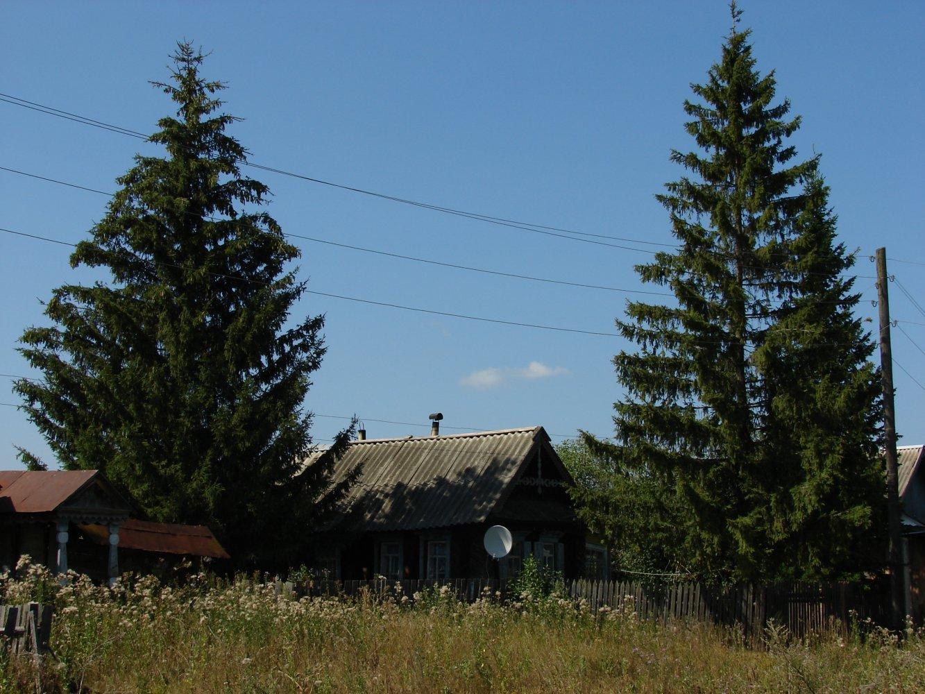 Фото Жизнь теплится в Мордовской Темрязани. Россия, Ульяновская область, Unnamed Road