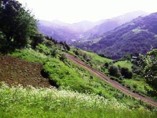 Фото Вид с Муса с. Котанто.jpg. Грузия, Имерети, Гуфта-Къуайса