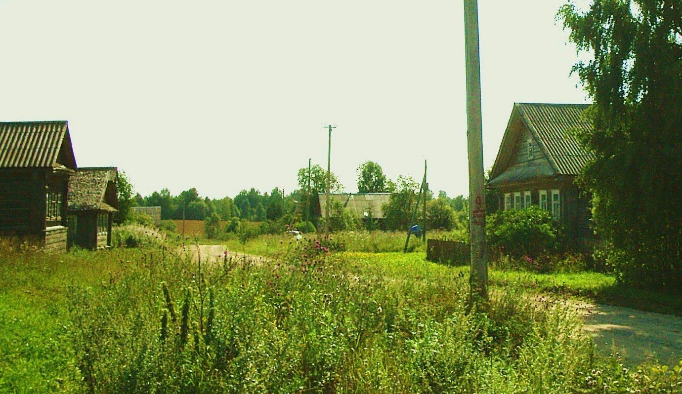 Фото S4010143.JPG. Россия, Вологодская область, Unnamed Road
