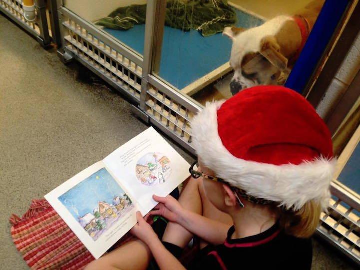 Фото дети читают собакам. Соединенные Штаты Америки, Missouri, Barnhart, Shelter Road, 7115