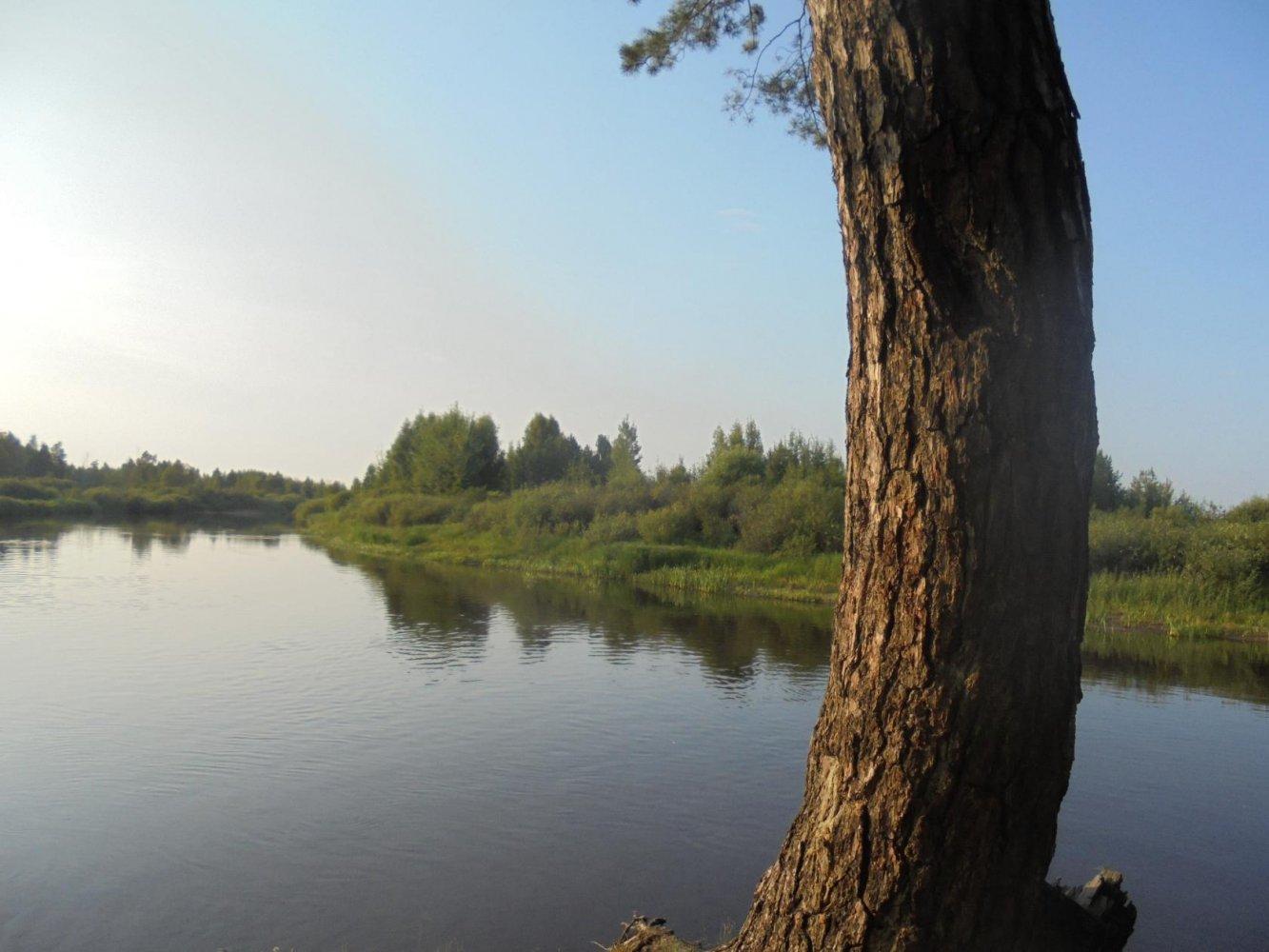 Фото р.Пра.с.Ялмонть.jpg. Россия, Рязанская область, Ялмонть, Unnamed Road