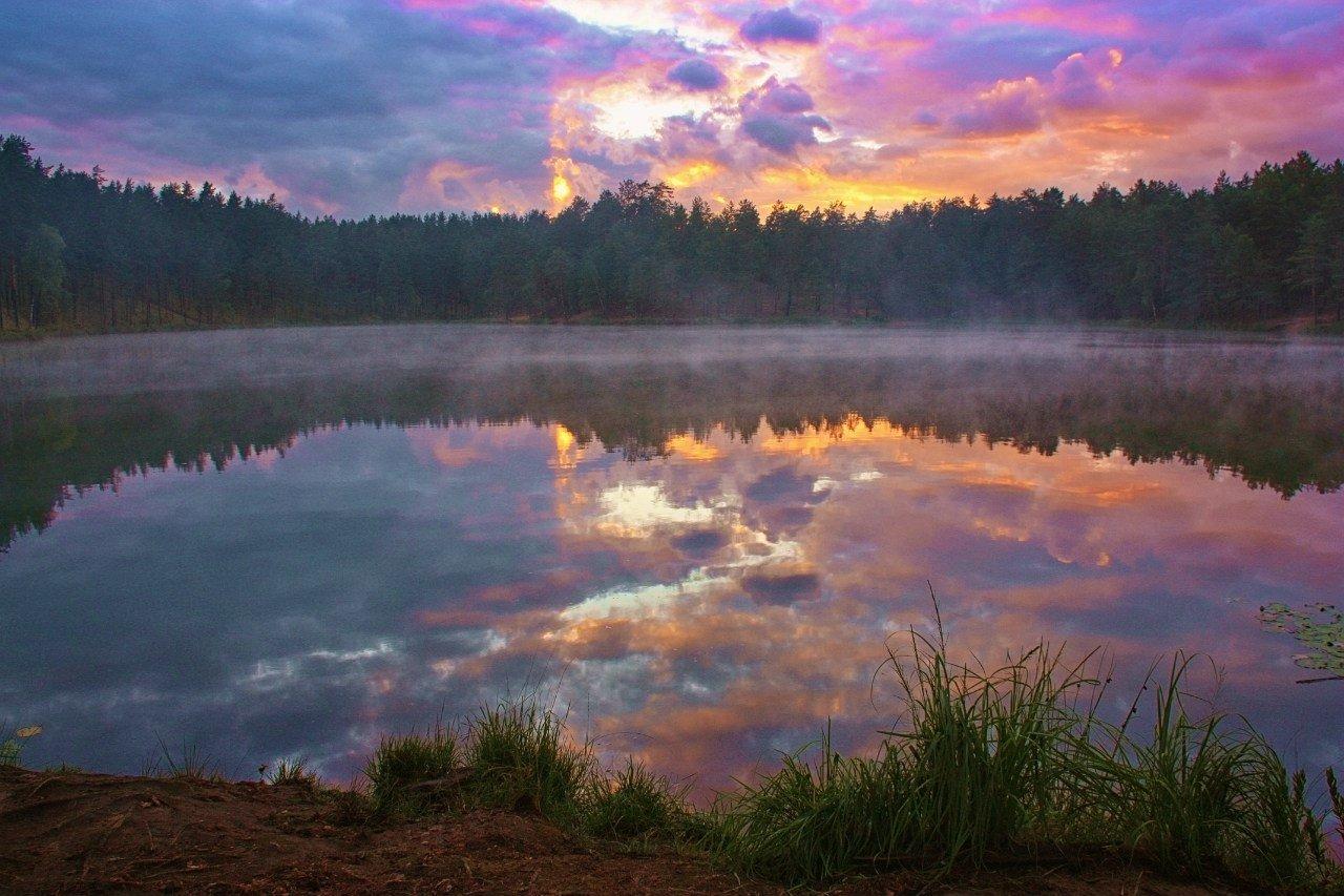 Фото Серебряное озеро 2013. Россия, Псковская область, 58К-96