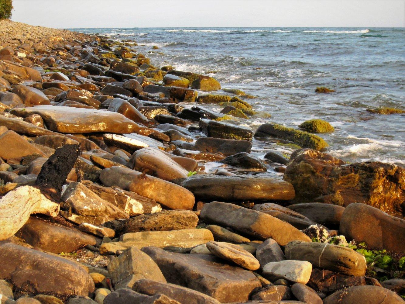 Фото Дорога к мидиевой ферме по берегу.