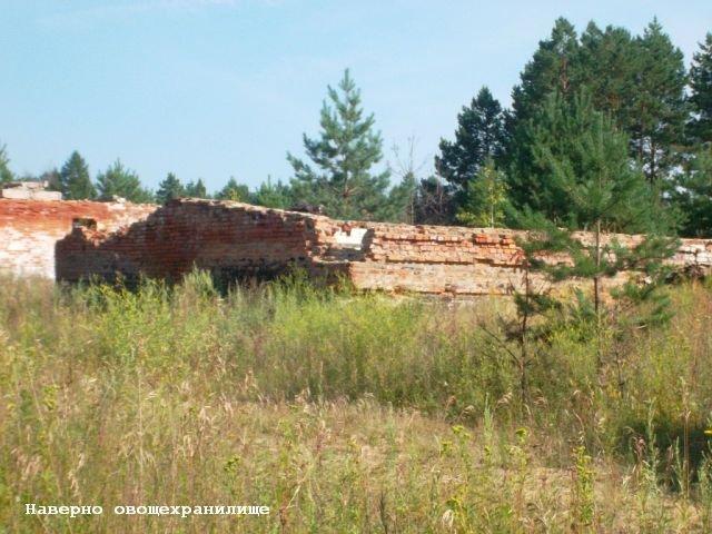 Фото Овощехранилище. Россия, Амурская область, М58