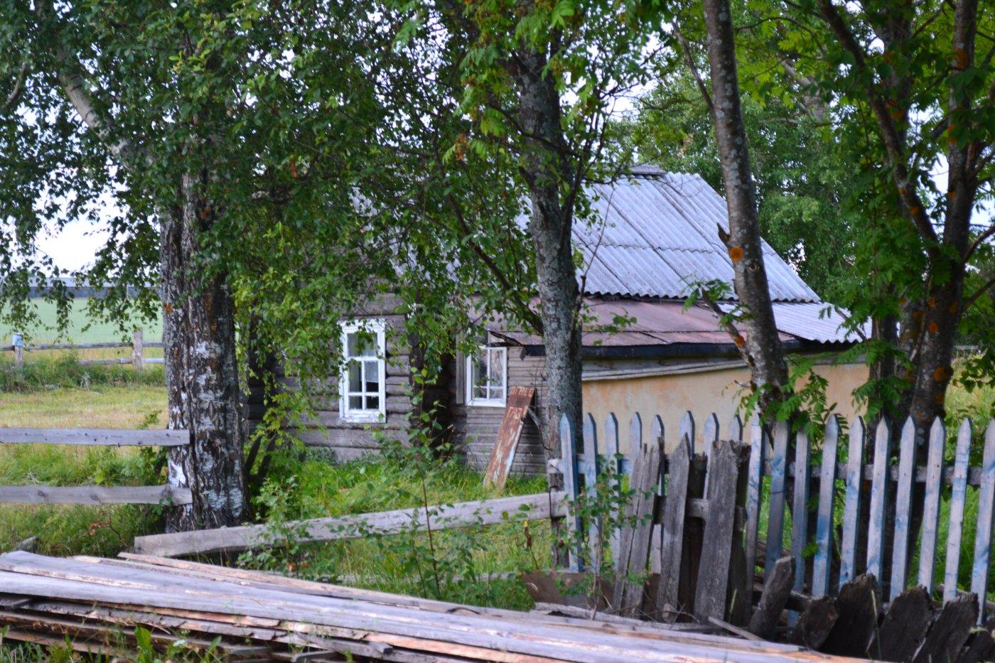 Фото DSC_0074.JPG. Россия, Вологодская область