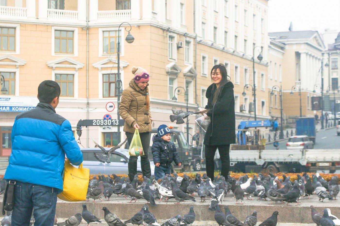 Фото 9536 (Copy).jpg. Россия, Приморский край, город Владивосток, Светланская улица, 29