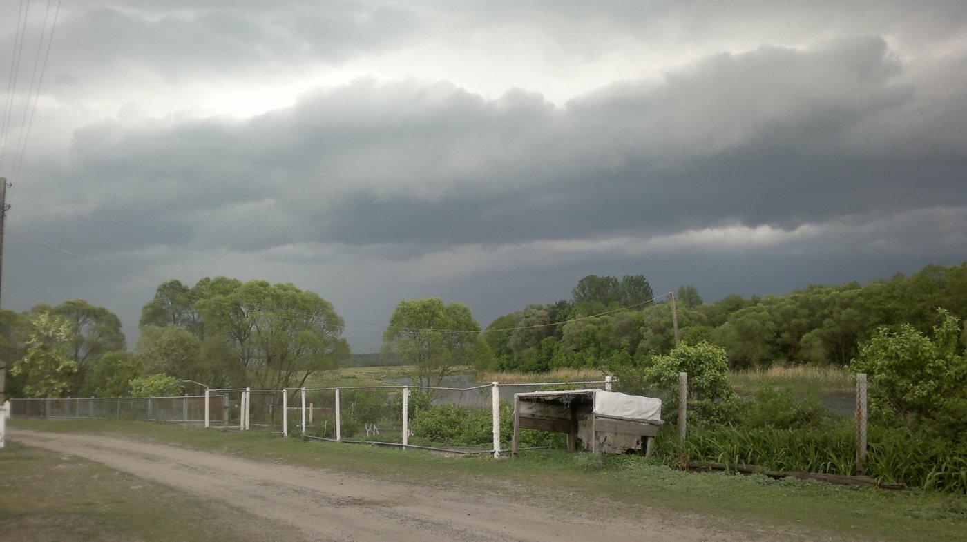 Фото Белица скоро будет пестец 16052012603.jpg. Россия, Курская область, автодорога Обоянь-Суджа