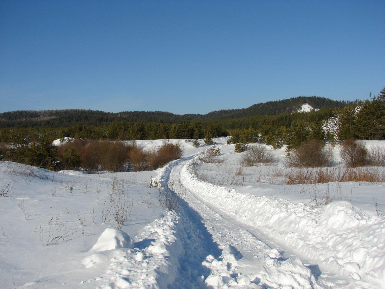 Фото DSC04843.JPG. Россия, Ульяновская область, Unnamed Road
