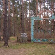 Фото image (1).jpg. Россия, Брянская область, М13