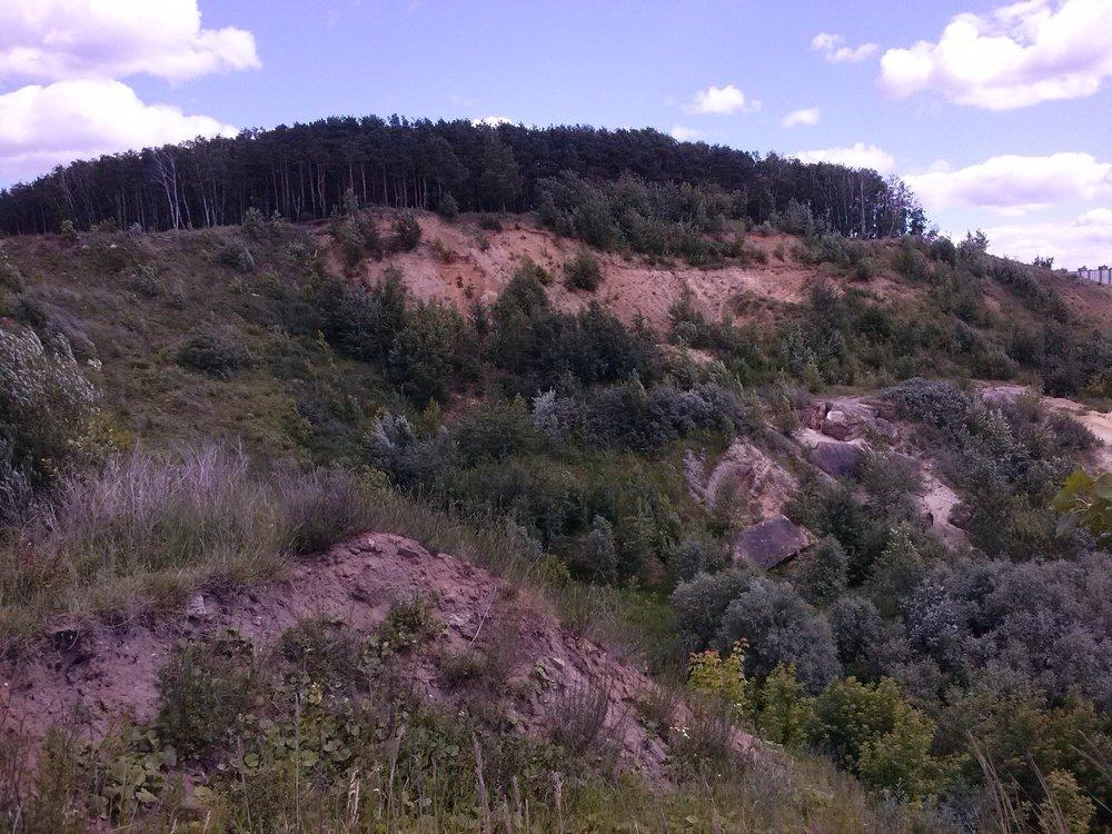 Фото Опять лес на холме, но более живописно..