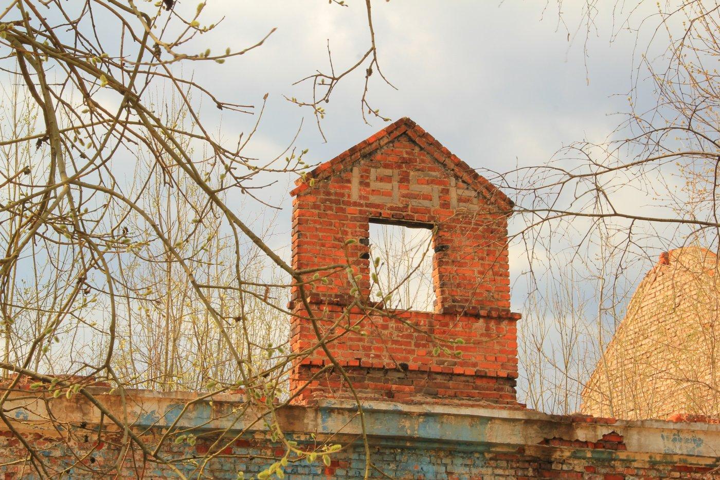 Фото IMG_5526.JPG. Россия, Московская область, Тучково, улица Советская