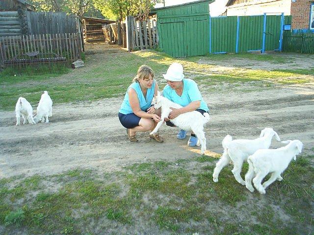 Фото getImage (23).jpg. Россия, 646454