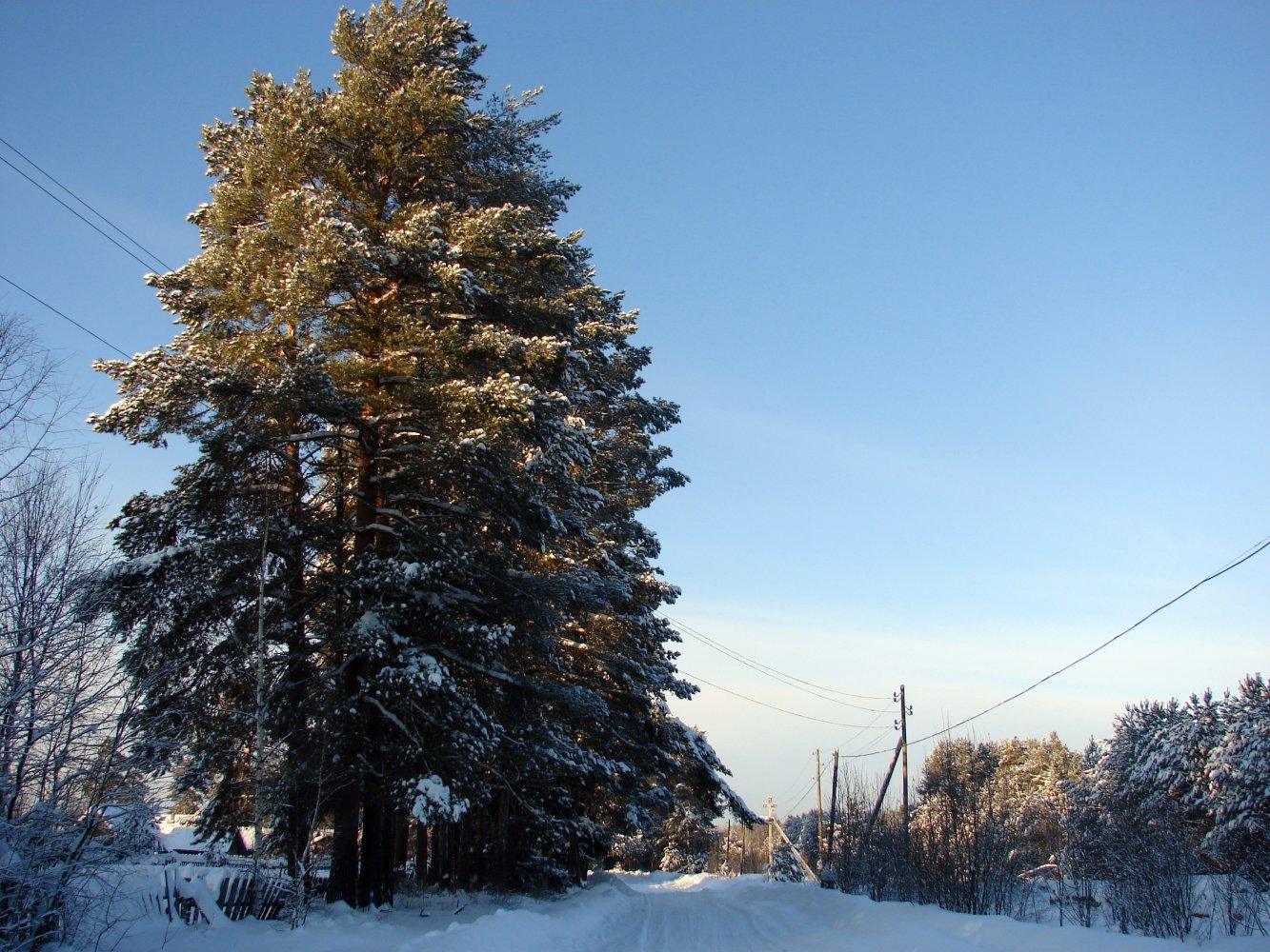 Фото DSC03951.JPG. Россия, Костромская область, Боровской, Unnamed Road