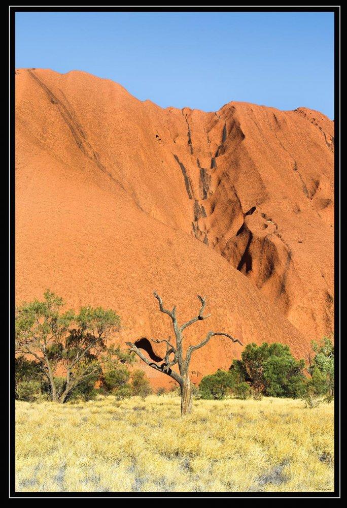 Фото 1487-1 (Copy).jpg. Австралия, Northern Territory, Uluru Summit Walk
