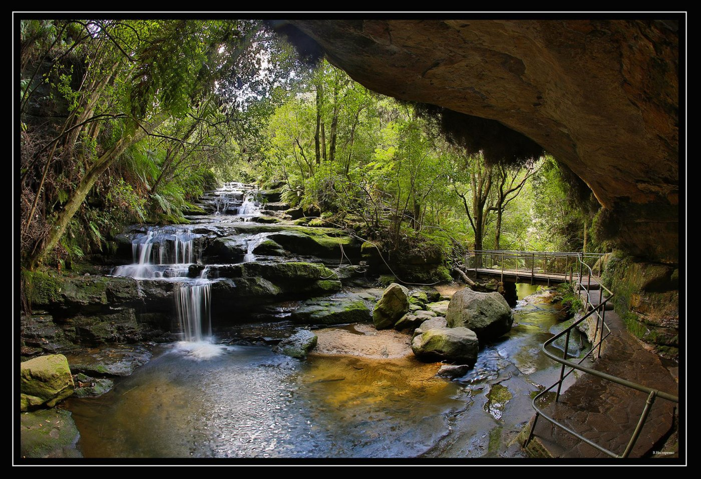 Фото 4675-1 (Copy).jpg. Австралия, New South Wales, Blue Mountains National Park, Hurley Heights Trail