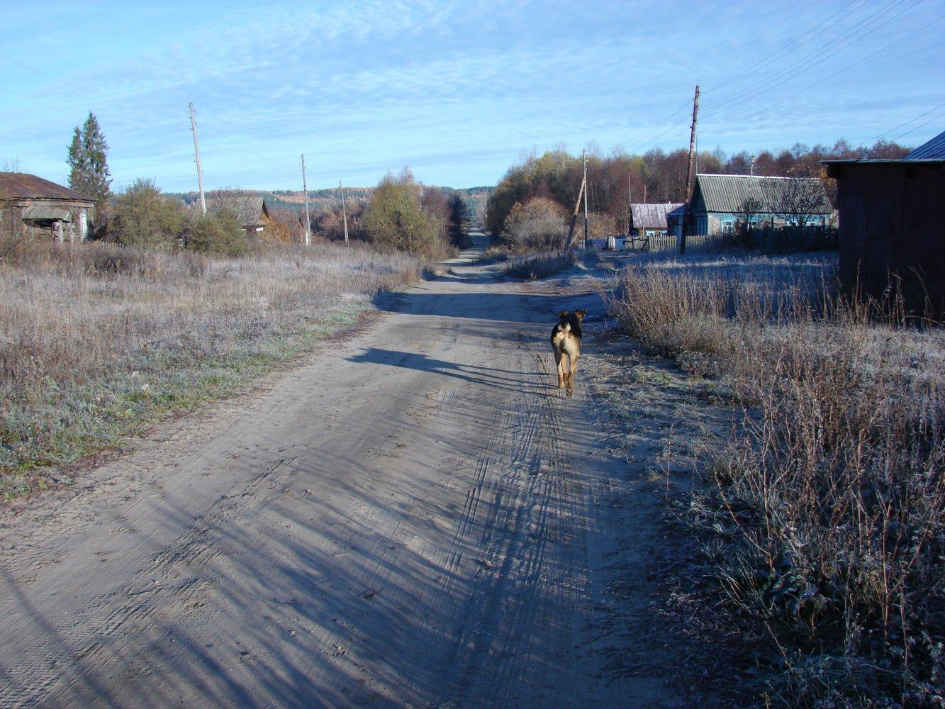 Фото DSC05951.JPG. Россия, Ульяновская область, Unnamed Road