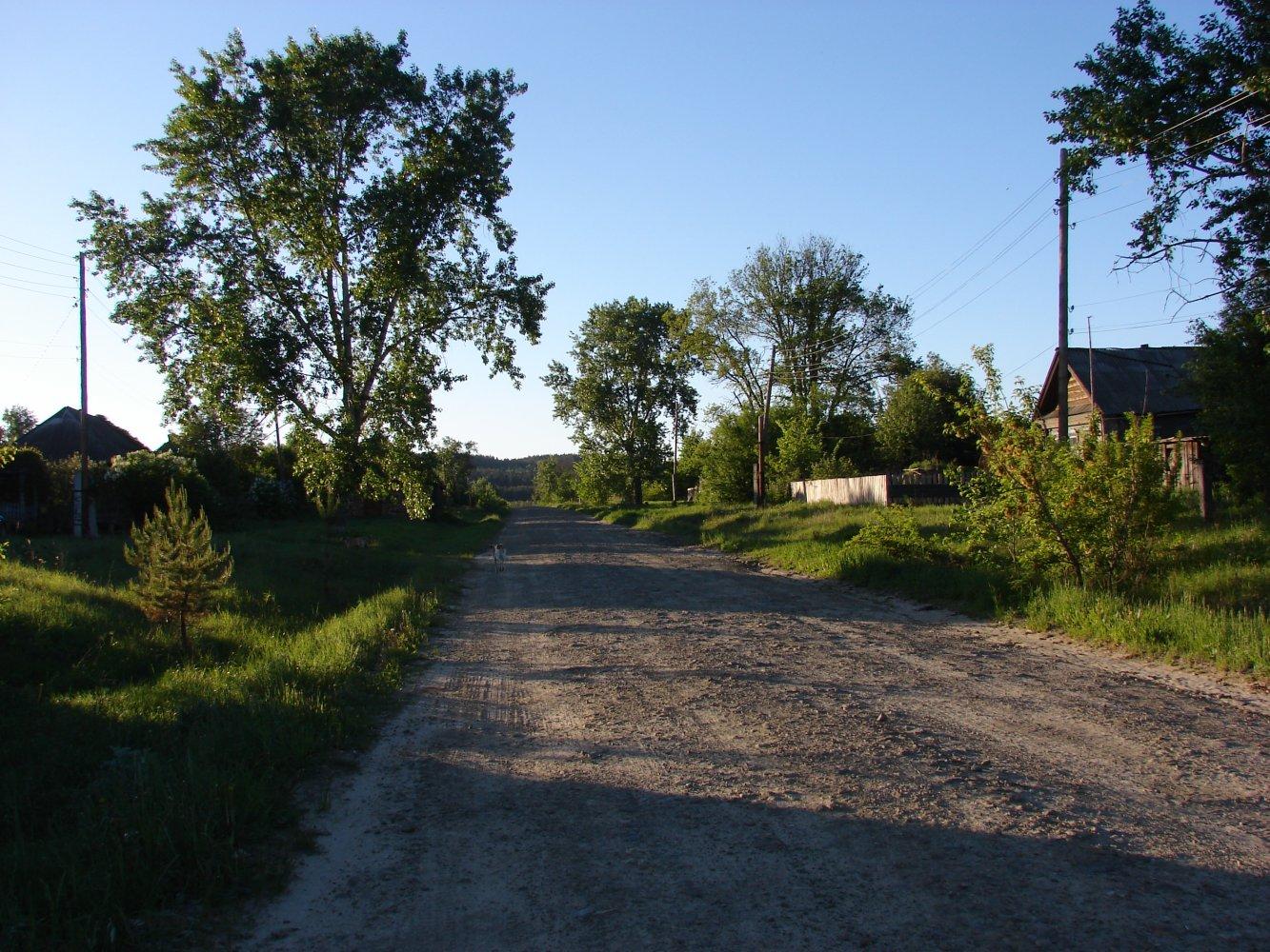 Фото DSC05111.JPG. Россия, Ульяновская область, Unnamed Road