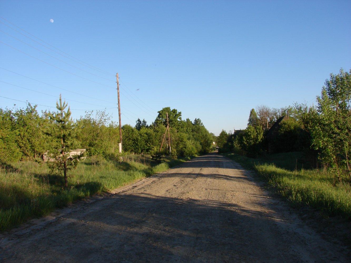 Фото DSC05117.JPG. Россия, Ульяновская область, Unnamed Road