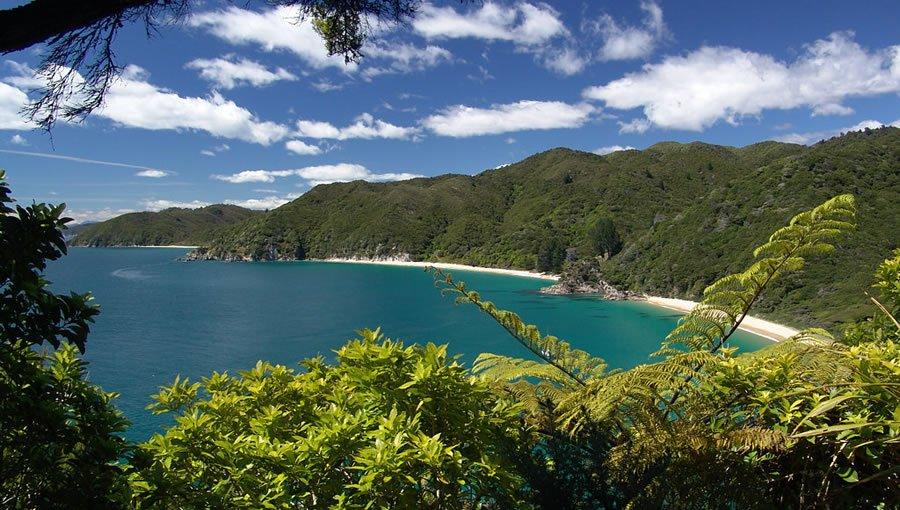 Фото Абель-Тасман (национальный парк). Новая Зеландия, Тасман, Тата Бич, Мак-Шейн-роуд, 37-157