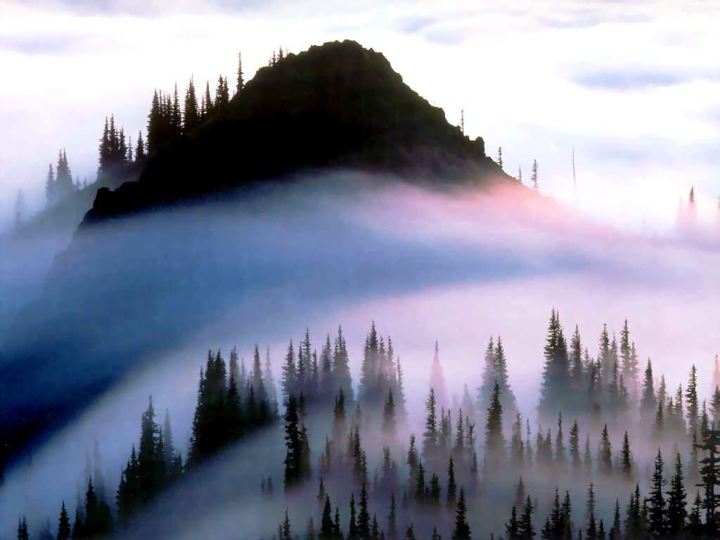 Фото Национальный парк Олимпик. Соединенные Штаты Америки, Washington, Forks, Hoh Valley Road