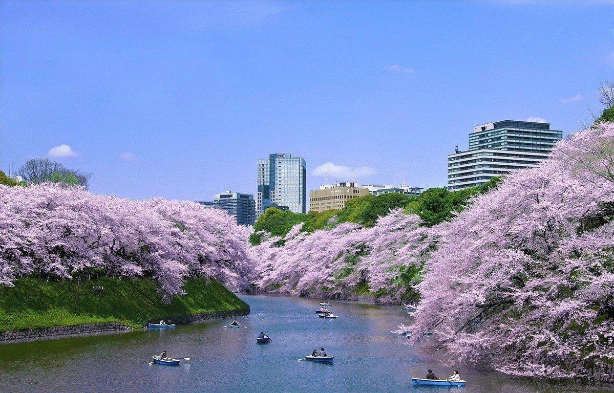Фото Императорский дворец. Япония, Токио, Тиёда