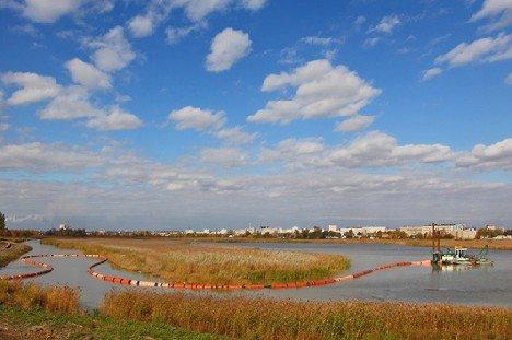 птичья гавань фото омск