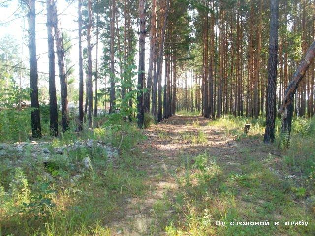 Фото От столовой к штабу.. Россия, Амурская область, М58