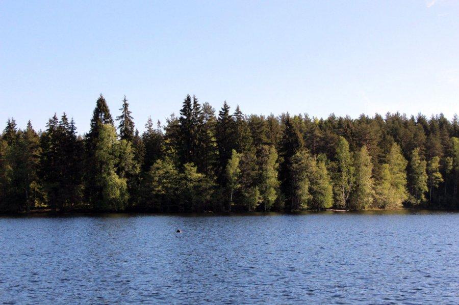 озеро долгое в надино рыбалка