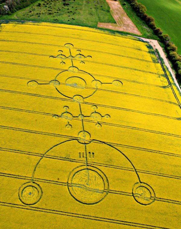 Фото Круги на поле. Великобритания, Мантон-роуд,