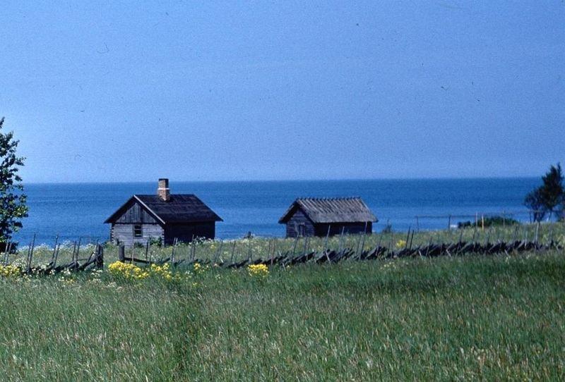 Фото из интернета. Эстония, Харьюмаа, Pringi, Kimsi tee, 14