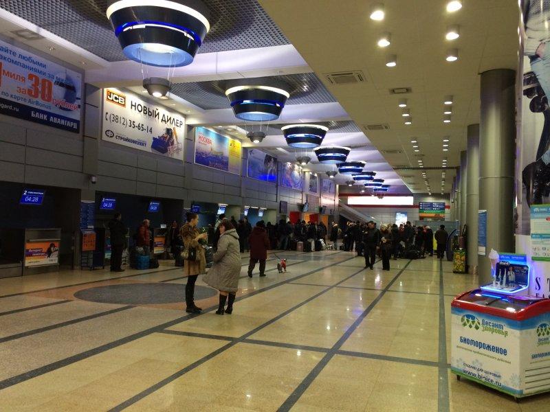 Как устроена кинологическая служба аэропорта 31