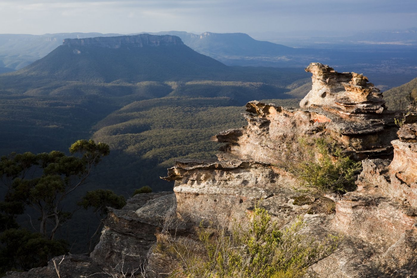 Фото Голубые горы. Австралия, New South Wales, Blue Mountains National Park, Hurley Heights Trail
