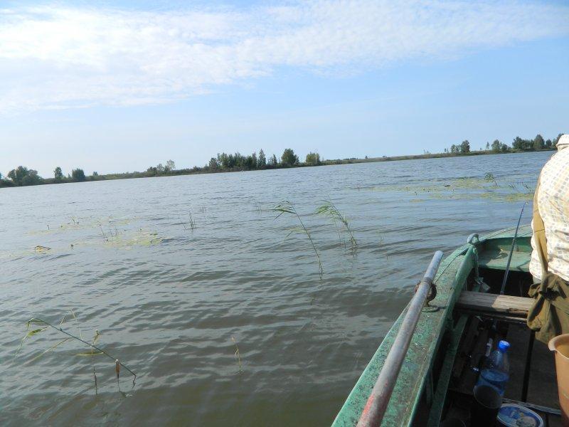 озеро драчково ярославская область рыбалка