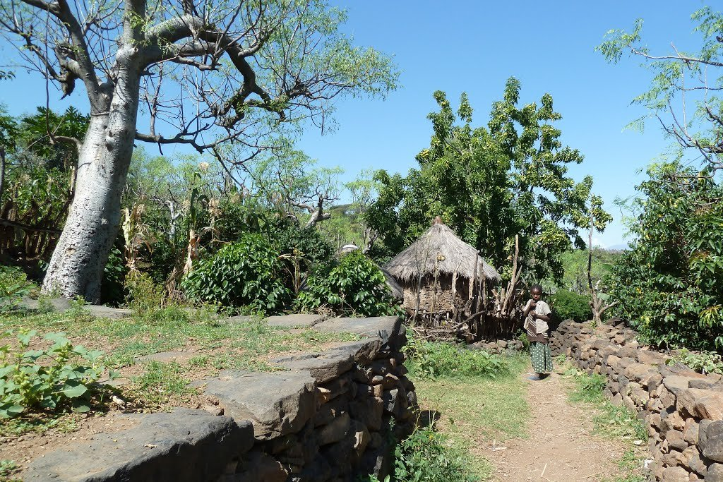 Фото Консо, Эфиопия. Эфиопия, Регион Народов и народностей юга, Konso