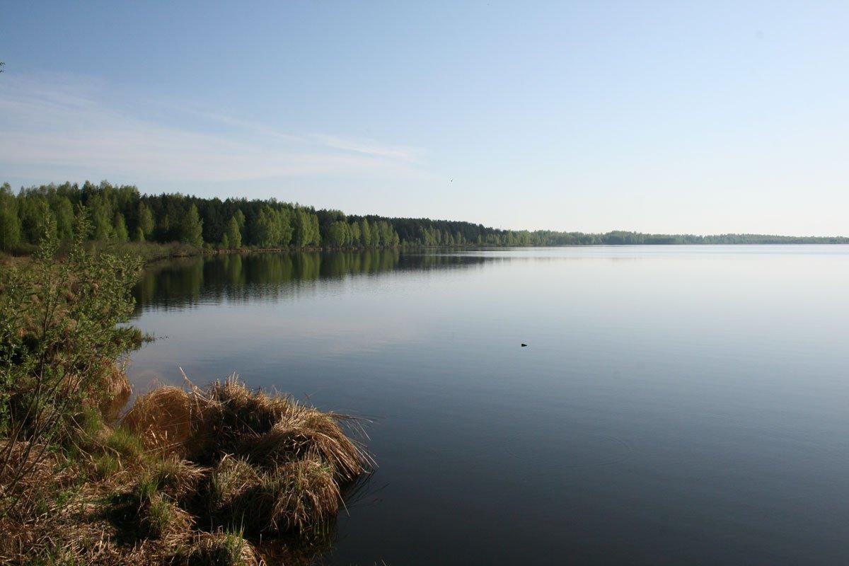 рыбалка сельное рязанская область