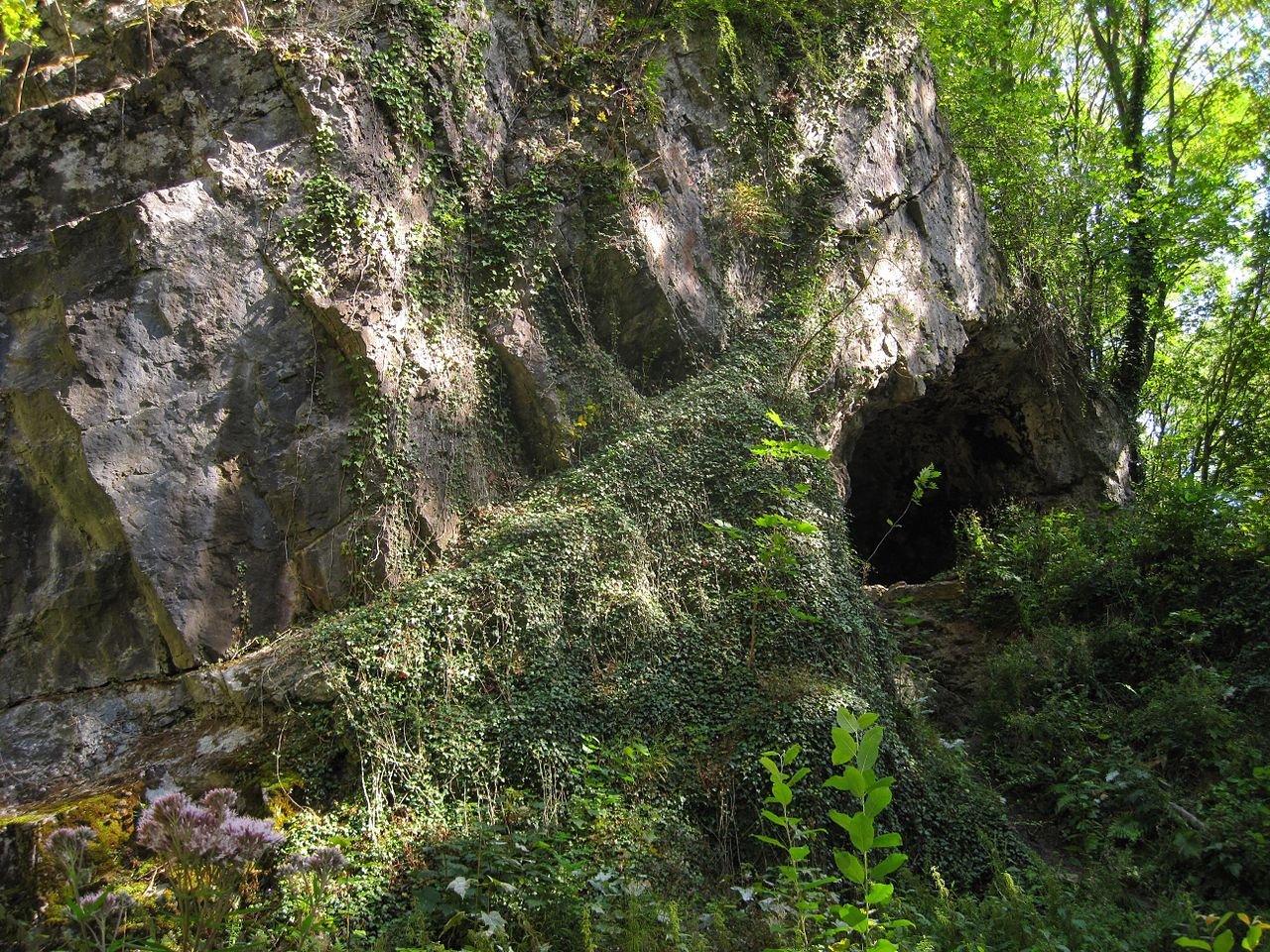 Фото Пещера Принца. Германия, Nordrhein-Westfalen, Hemer, Am Perick, 56