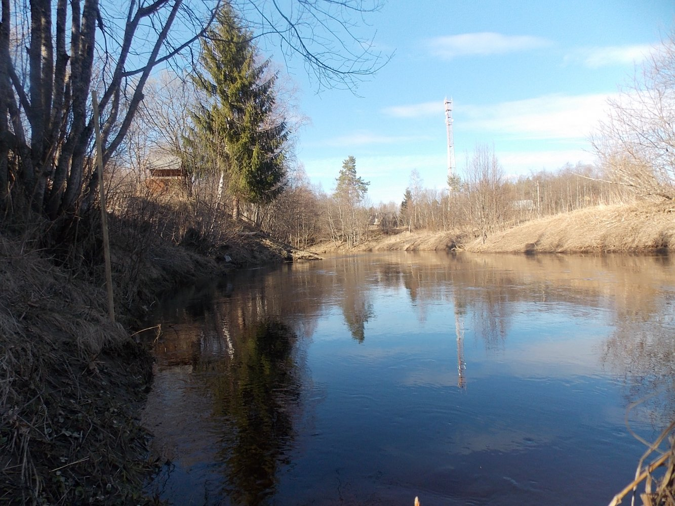 река лисья рыбалка