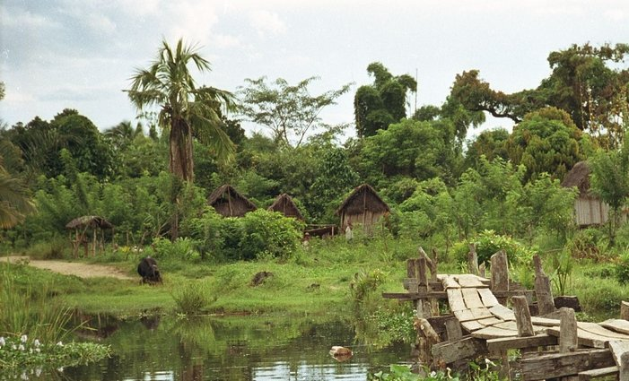 Фото Парк Масуала. Мадагаскар, Antsiranana