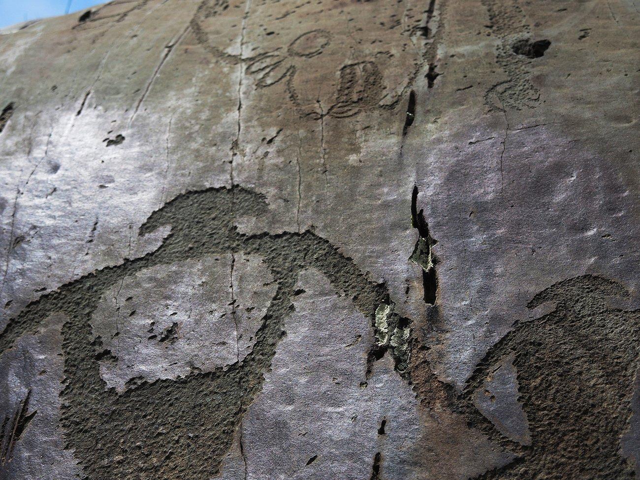 Фото Наскальный рисунок. Россия, Алтай республика, Чуйский тракт