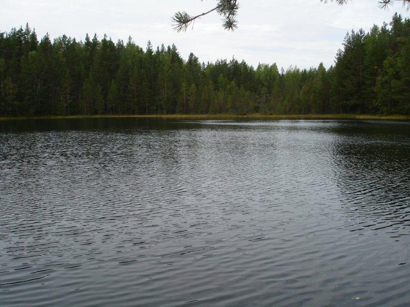 Рыбалка на комсомольском озере приозерского района