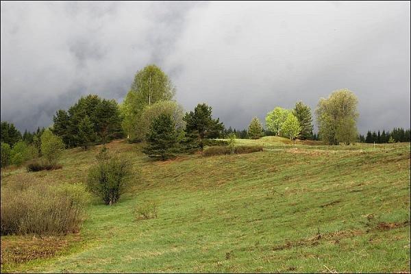 Фото  №2. Россия, Новгородская область